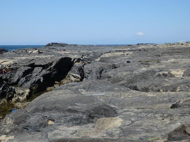 jougashima2.jpg