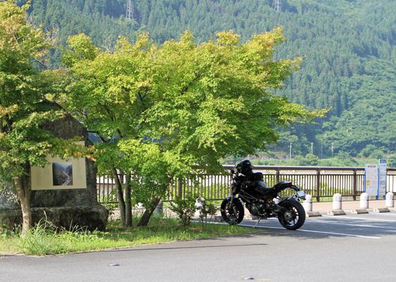 滝沢ダムの木陰