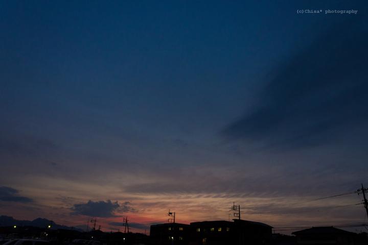 DSC_8488.jpg