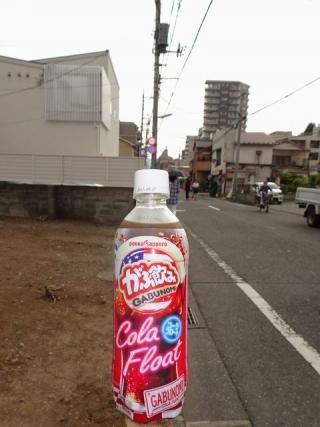 がぶ飲みコーラフロート (5)