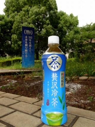 贅沢冷茶 (2)
