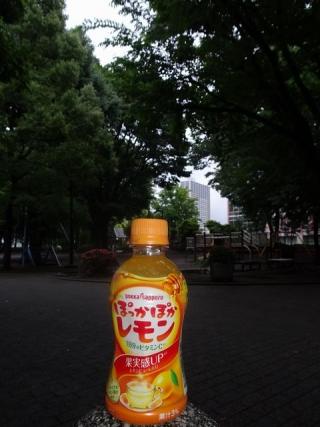 ぽかぽかレモン (1)