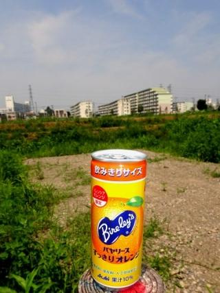 飲みきりバヤリース (1)