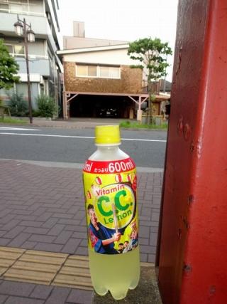 C.C.レモン祭り
