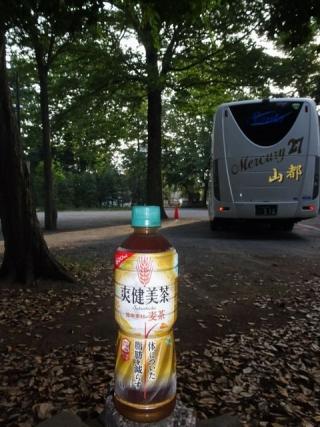 爽健麦茶 (5)