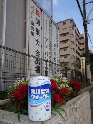 カルピスウォーター缶 (2)