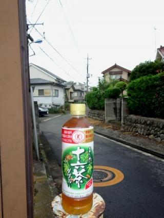 十六茶ダブル (2)