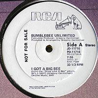 BumblebeeUn-Igot(USpro)200_20170707184021fe6.jpg