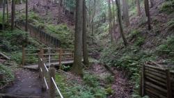 20170611七沢森林公園10