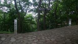 20170611七沢森林公園2