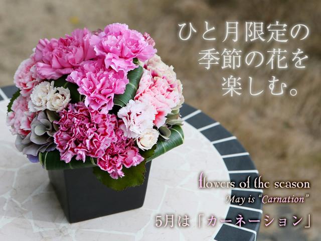 母の日 人気 ギフト 花 カーネーション アレンジ 全国 配送