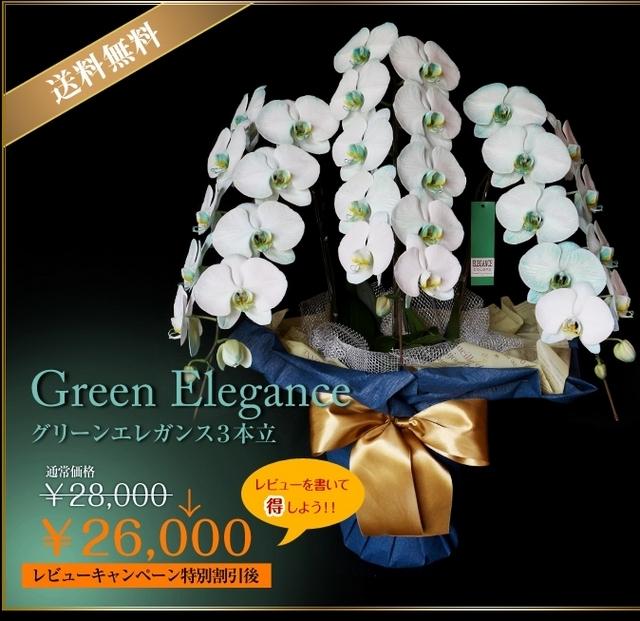 胡蝶蘭 個性的 緑 青 全国配送 サプライズ