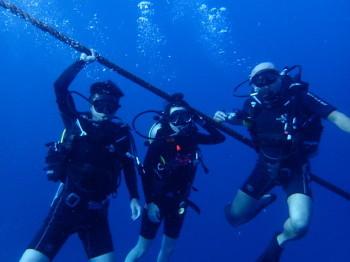 タオ島、海ブログ、水中写真