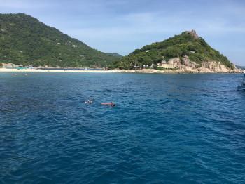 つばさ、水中写真、ストロボ、タオ島
