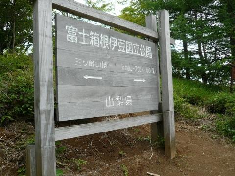 P1300271-s.jpg