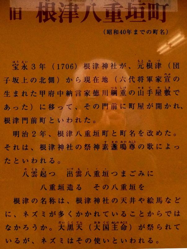 DSC07662_2017070908180736a.jpg
