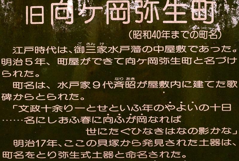 DSC07663_201707090819374f0.jpg