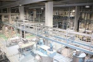 Nihon-seishi_CNF_ishinomaki-plant_image1.jpg