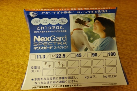 DSC09301.jpg