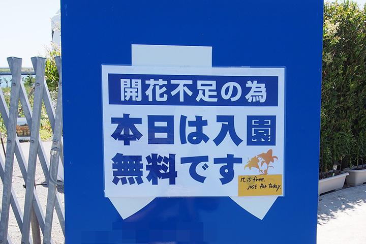 20170528_osaka_maishima_yurien-03.jpg