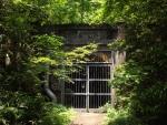 無患子隧道24