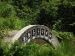 無患子隧道37