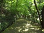 白山比咩神社13