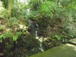 白山比咩神社17