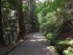 白山比咩神社18