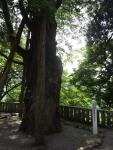 白山比咩神社28