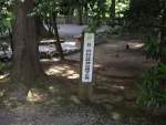 白山比咩神社38