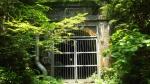無患子隧道2