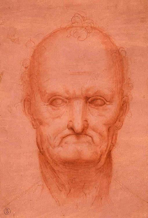 20170707 レオナルド老人の頭部1510年頃 18㎝0170331_09