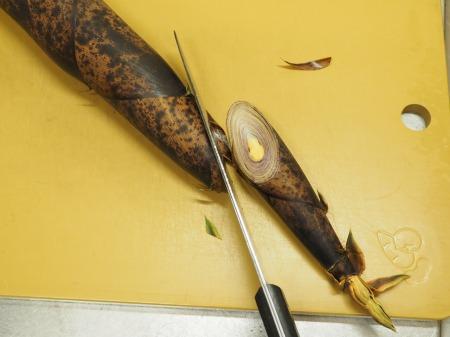 手羽元と破竹のうま煮31