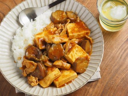 豆腐と茄子の炒めカレー017