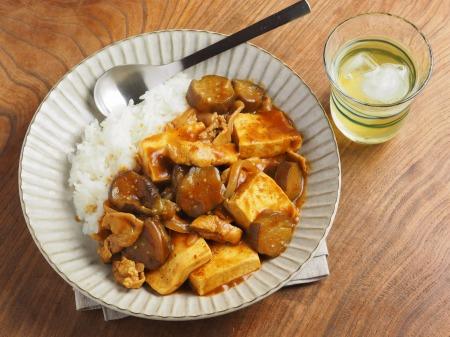 豆腐と茄子の炒めカレー019
