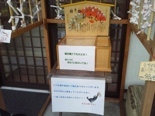 fukui-gifu2017-224.jpg