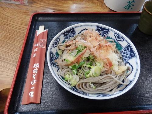 fukui-gifu2017-232.jpg