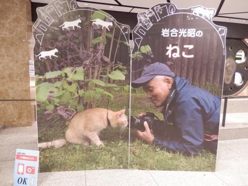 photo17-0910-04.jpg