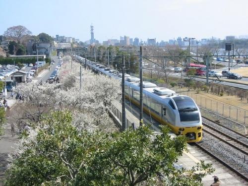 train-ibaraki-009.jpg