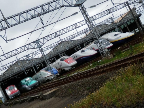 train-niigata-002.jpg