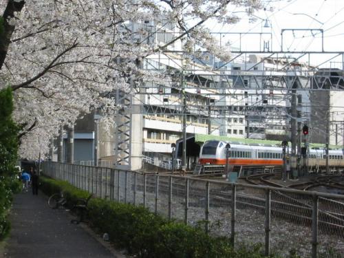 train-tokyo-019.jpg