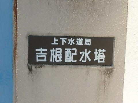P6130025.jpg