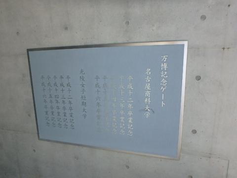 P9081198.jpg