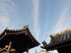 光松寺の空blog01