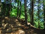 階段キツイ