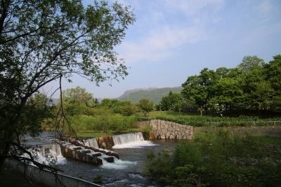 20170520_散歩コースの風景_006
