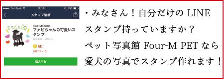 ブログ 人気 記事-01-01