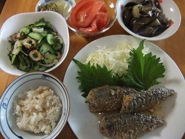 鯵南蛮、酢物、ナス雑魚、トマト