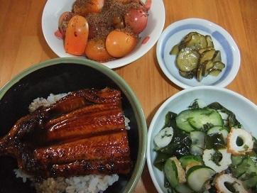 鰻丼、酢物、トマト、Qちゃん